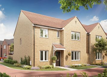 "Thumbnail 4 bedroom detached house for sale in ""The Mayfair "" at Bellona Drive, Peterborough"