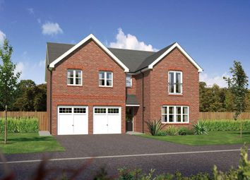 "Thumbnail 5 bed detached house for sale in ""Malborough"" at Bolton Road, Adlington, Chorley"