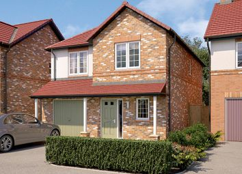 "Thumbnail 3 bed detached house for sale in ""The Newton"" at Rectory Lane, Guisborough"