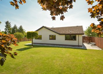 Thumbnail 4 bedroom detached house for sale in Colenhaugh, Stormontfield, Perth