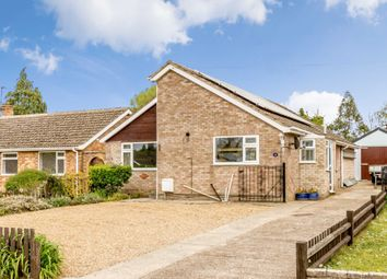 Thumbnail 4 bed detached bungalow for sale in Wayland Avenue, Watton, Thetford