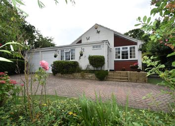 Thumbnail 3 bed detached bungalow for sale in Pleasant Hill, Tadley, Hampshire
