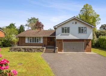 Thumbnail 4 bed detached house to rent in Waverley Drive, Camberley, Surrey