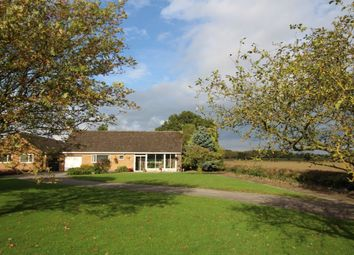 Thumbnail 2 bed bungalow for sale in Aston Lane, Aston Flamville, Hinckley