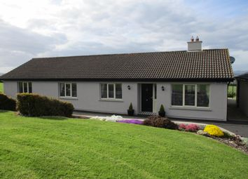 Thumbnail 4 bed bungalow for sale in Shangan, Butlerstown, Waterford