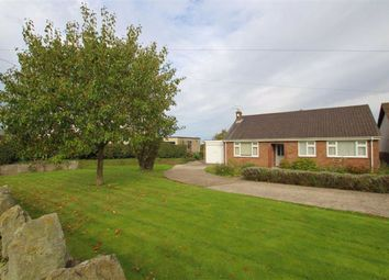 Thumbnail 3 bed detached bungalow for sale in Church Road, Northop, Flintshire