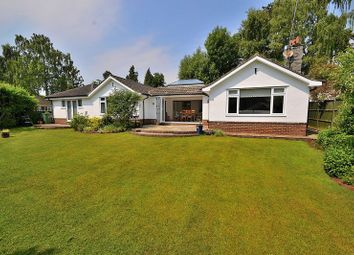 Thumbnail 5 bed detached bungalow for sale in Taylors Ride, Leighton Buzzard
