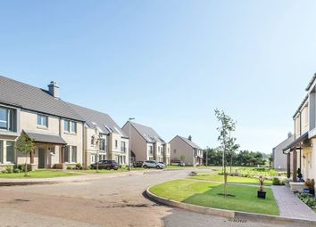 "Thumbnail 5 bed detached house for sale in ""The Hamilton"" at Muirfield, Gullane"