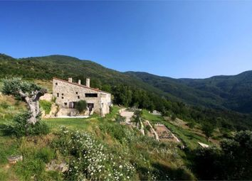 Thumbnail Property for sale in Vallespir, Pyrénées-Orientales, France