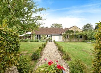 Thumbnail 4 bed detached bungalow for sale in Kings Stag, Sturminster Newton, Dorset