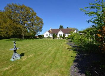 Thumbnail 5 bed detached house to rent in Rye Hill Road, Harlow