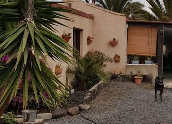 Thumbnail 3 bed farmhouse for sale in Lajares, Lajares, Fuerteventura, Canary Islands, Spain