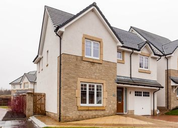 Thumbnail 4 bed property for sale in Millview Close, Auchterarder