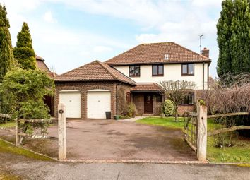 Thumbnail 4 bedroom detached house for sale in Plainwood Close, Chichester, West Sussex