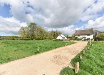 Thumbnail 5 bed property for sale in Chilbolton, Stockbridge