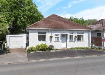 Thumbnail 3 bed detached bungalow for sale in South, Hereford