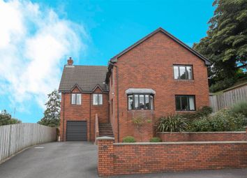 Thumbnail 4 bed detached house for sale in Finchley Vale, Belfast