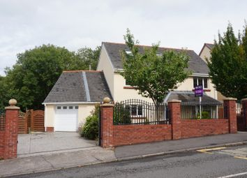 Thumbnail 5 bedroom detached house for sale in Birchgrove Road, Glais