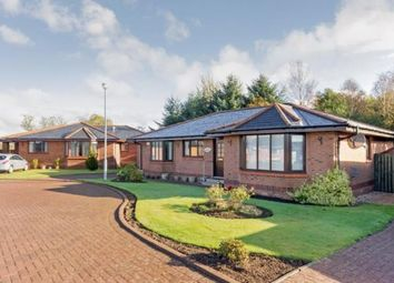 Thumbnail 3 bed bungalow for sale in The Fieldings, Dunlop, Kilmarnock, East Ayrshire