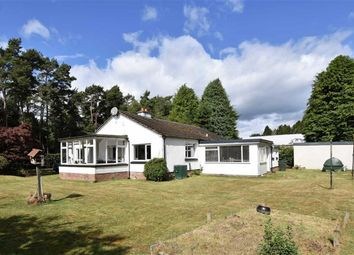 Thumbnail 3 bed detached bungalow for sale in Scotsburn Road, Kildary, Ross-Shire