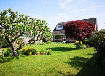 Thumbnail 5 bed bungalow for sale in Taylor Avenue, Cringleford, Norwich