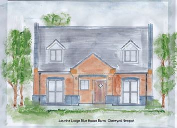 Thumbnail 3 bed detached house for sale in Chetwynd Road, Newport