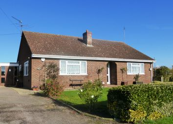 Thumbnail 3 bed bungalow to rent in Hasse Road, Soham, Ely