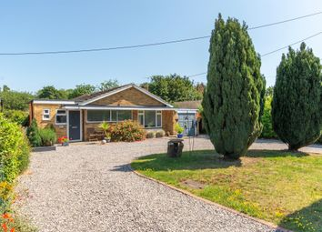 Thumbnail 3 bed detached bungalow for sale in Rookery Lane, Great Totham, Maldon