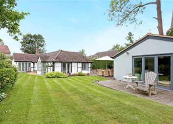 Thumbnail 3 bed detached bungalow for sale in Mincing Lane, Chobham, Surrey