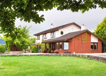 Thumbnail 4 bed detached house for sale in Killadreenan, Newtownmountkennedy, Wicklow County, Leinster, Ireland