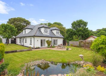 Thumbnail 4 bedroom detached house for sale in Clapham, Exeter