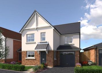Thumbnail 3 bed detached house for sale in Cae Celyn, Maes Gwern, Mold, Flintshire