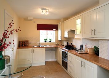 Thumbnail 4 bed detached house for sale in Off Gallus Drive, Hinckley
