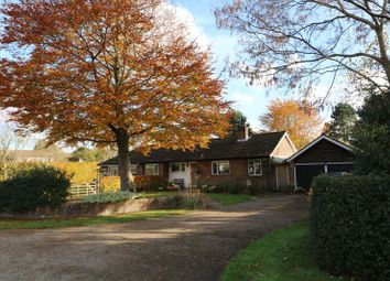 Thumbnail 4 bed bungalow for sale in Little Borough, Brockham, Betchworth