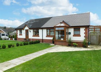 Thumbnail 2 bed semi-detached bungalow for sale in Bolahaul Road, Cwmffrwd, Carmarthen