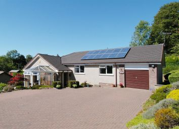 Thumbnail 3 bed bungalow for sale in Montras, Victoria Crescent, Selkirk