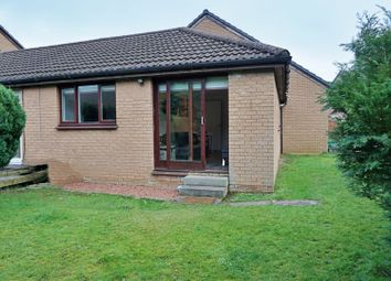 Thumbnail 1 bed bungalow for sale in Frood Street, Motherwell