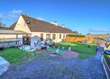 3 bed semi-detached bungalow for sale in Montrose DD10