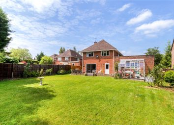 Thumbnail 4 bed detached house for sale in Oak Close, Chiddingfold, Godalming, Surrey
