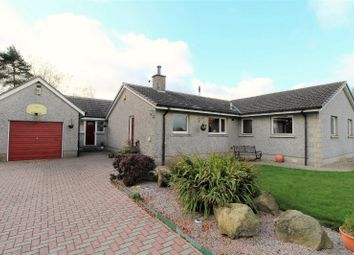 Thumbnail 4 bed detached bungalow for sale in Oldmeldrum, Inverurie