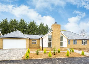 Thumbnail 4 bed detached house for sale in Hutton Grange, North Drive, Hutton, Brentwood