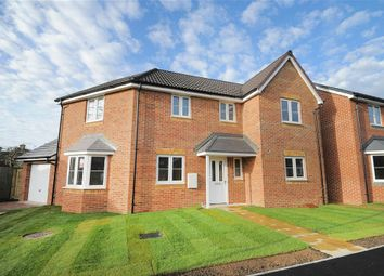 Thumbnail 4 bedroom detached house for sale in Cloche Way, Upper Stratton, Swindon