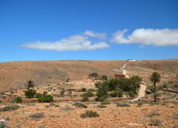 Thumbnail Finca for sale in Valle De Santa Ines, Betancuria, Fuerteventura, Canary Islands, Spain