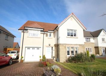 Thumbnail 5 bed detached house for sale in Harris Grove, The Ambles, Lindsayfield, South Lanarkshire