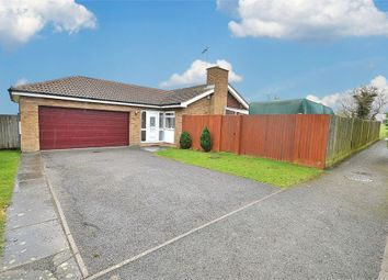 Thumbnail 3 bed detached bungalow for sale in Lime Farm Way, Great Houghton, Northampton