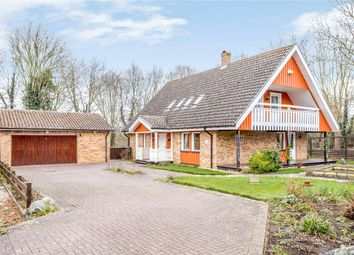 Thumbnail 4 bed country house for sale in Svenskaby, Orton Wistow, Peterborough