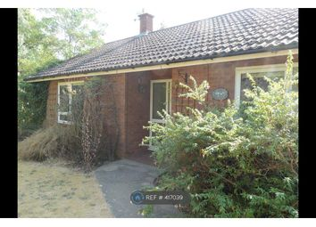 Thumbnail 2 bed bungalow to rent in Through Duncans, Woodbridge