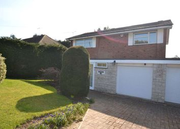 Thumbnail 4 bedroom detached house to rent in South View Road, Ashtead