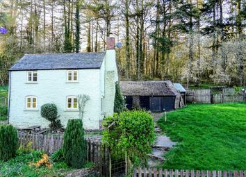Thumbnail 3 bed cottage for sale in Treago, Werndee Cottage, St. Weonards