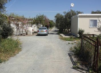 Thumbnail Land for sale in Zygi, Larnaca, Cyprus